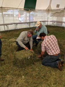 2018 judges inspecting a hay bale.