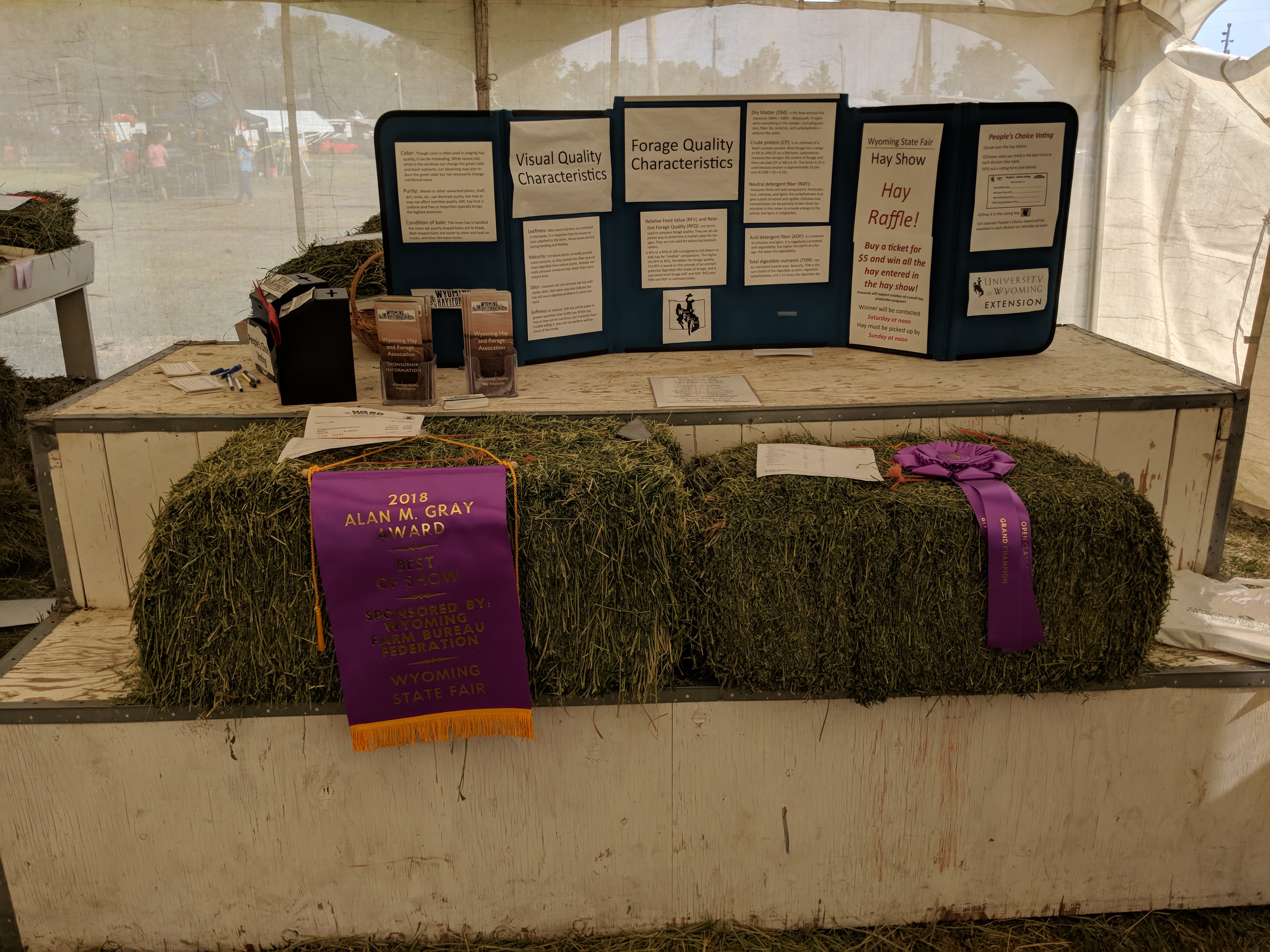 State Fair Hay Show Champions